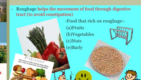 What Is Roughage?